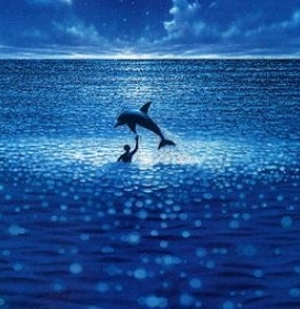 Dolphin Trainer datant